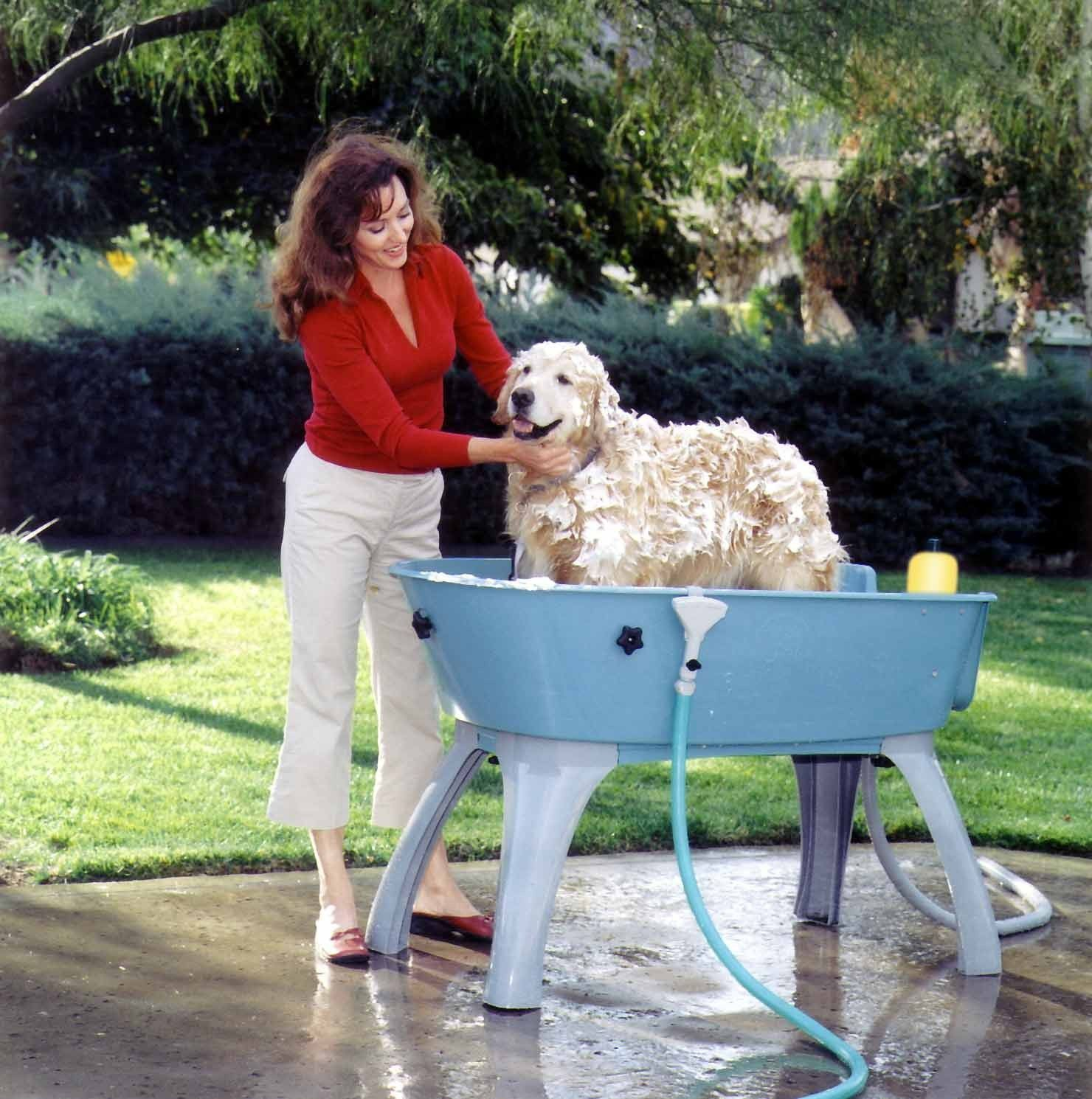 Booster Bath Bathing System For Dogs Has The Three Most Important