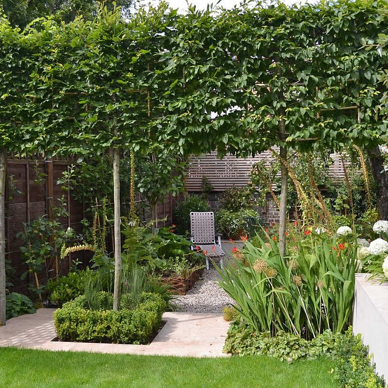 Lovely Family Garden Putney | Garden design, Small garden ...