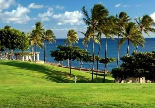 Kakaako Waterfront Park Landfill Turned Into A Beautiful In Ala Moana Hawaii