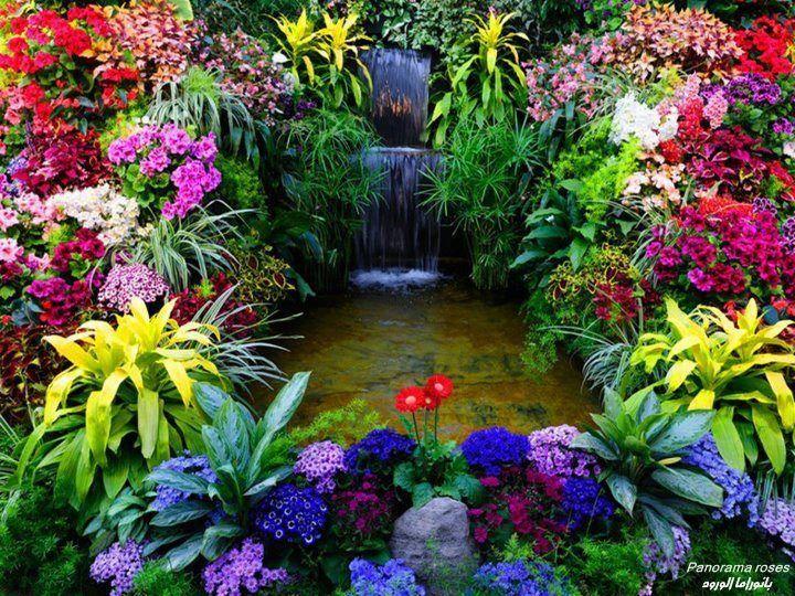 sixpenceee alnwick poison gardens les jardins ont t cr s en 2005 par la duchesse de. Black Bedroom Furniture Sets. Home Design Ideas