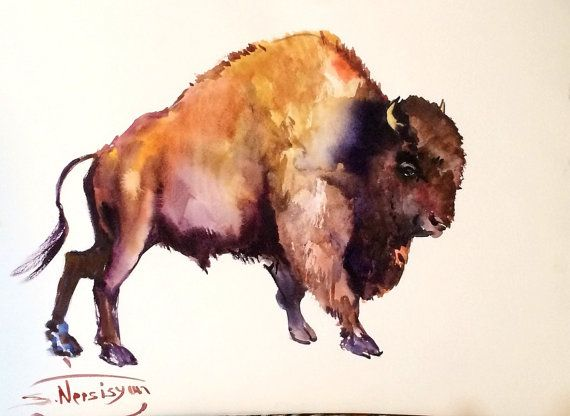 Bison 20 X 15 In Original Watercolor Painting Bull Bison