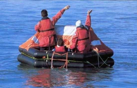Top ten sea survivors