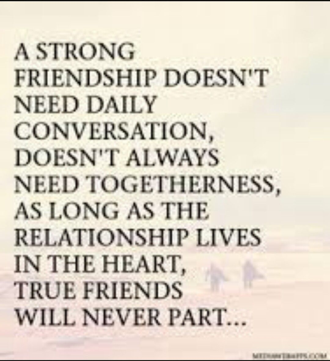 Quotes About Strong Friendship Pincameron Block On Words Of Wisdom  Pinterest  Wisdom