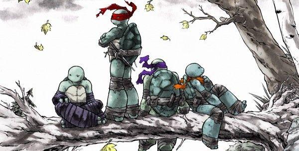 Ninja, Tortugas Ninjas Et Cómics