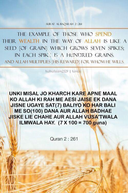 Surat Al Baqarah Ayat 261, 262, 263, 264, dan 265 Lengkap Dengan...