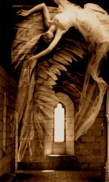 Whispers of wisdom are blowing on the wind waiting for your open heart to recognize their words. Whispering Stone Angel by Laura Hollick