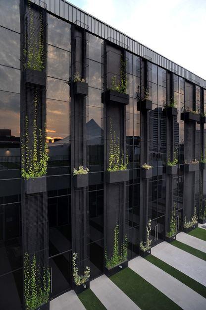 Black Tint Window Facade With Vertical Garden Concept