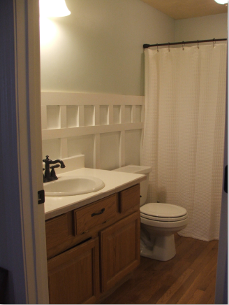 Sherwin williams sea salt oak bathroom paint colors for Sherwin williams bathroom paint colors