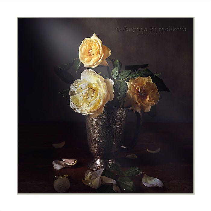 Восемь раз про желтые цветочки. Фотограф Карачкова Татьяна ...  Цветочки Розы