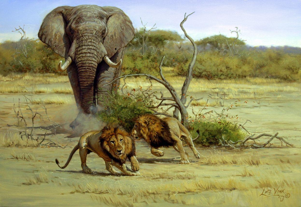 Pin Patti Keelan Elephants Wildlife Paintings