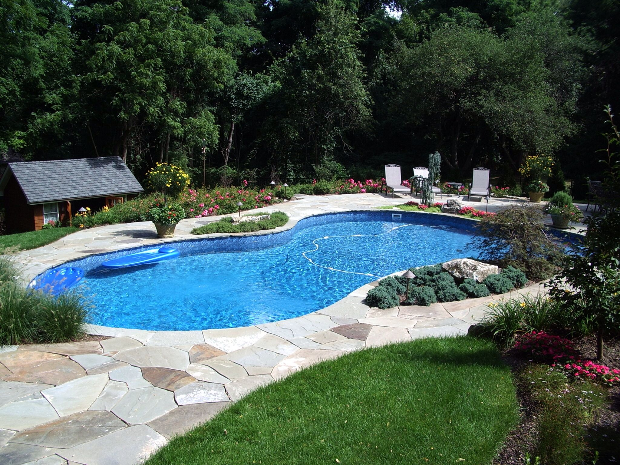 Free Form Swimming Pool Designs Free Form With Bluestone Patio  Pools  Pinterest  Patio And