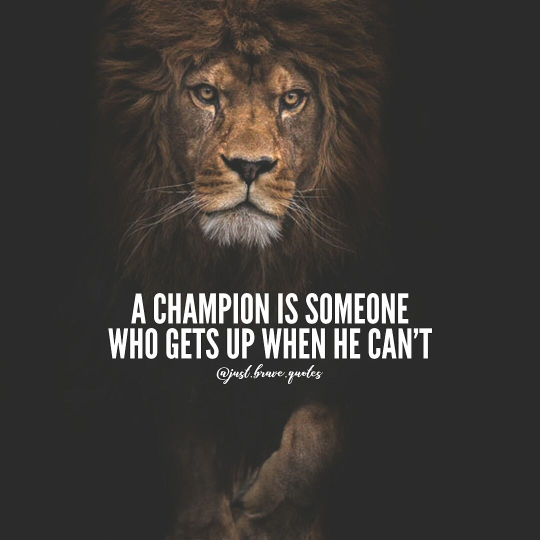 Motivational Quotes With Lion Images: Be A Champion For Life. #justbravequotes #champion #lion