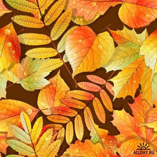 Клипарты Png на прозрачном фоне - Листья осени | 500x500
