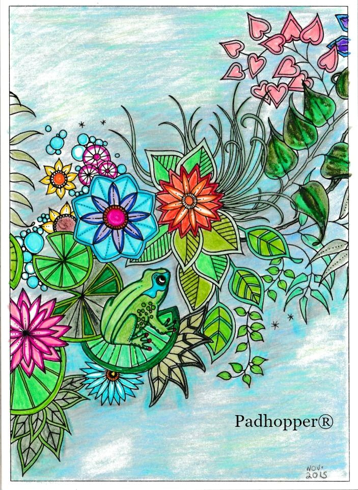 Frog From Secret Garden Postcard Book Completed With Crayola Coloured Pencils And Staedtler Triplus Fineliners Secretgarden Adultcolouring Crayola Coloure