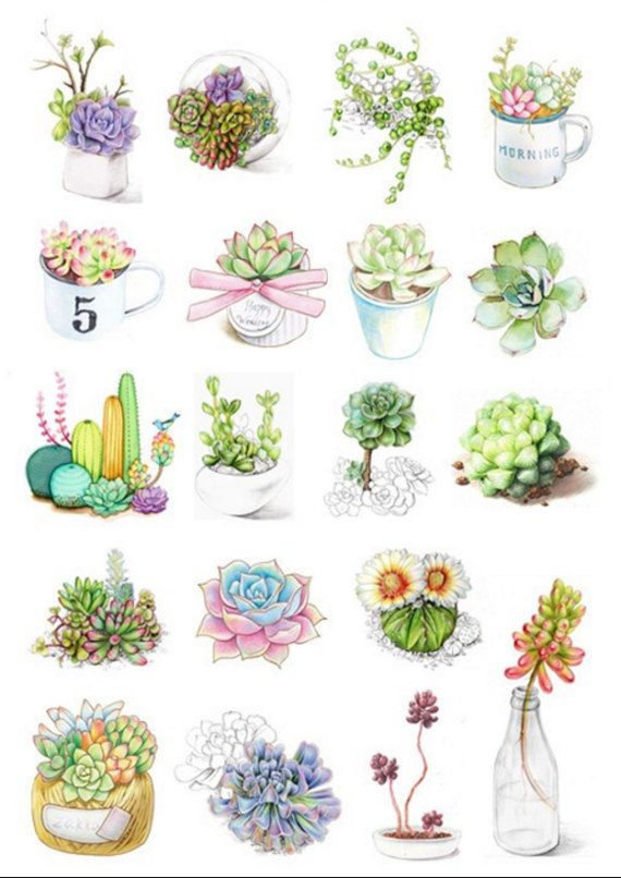 Cactus And Flowers Sticker Flakes For Your Crafting Needs Each