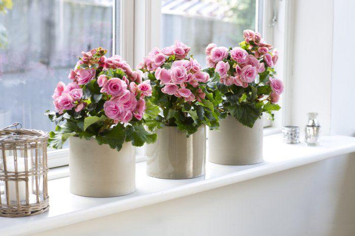 Fensterbank dekoration 57 ideen wie sie das potenzial for Dekoration wohnung manner