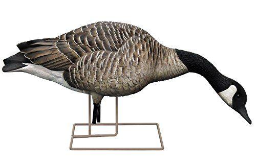 avian x honker feeder full body goose decoys 6 pack https huntinggearsuperstore