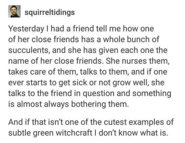 Green witchcraft  Green witchcraft #greenwitchcraft