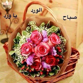 ورد سماء Aesthetic Roses Sweet Quotes Picture Quotes