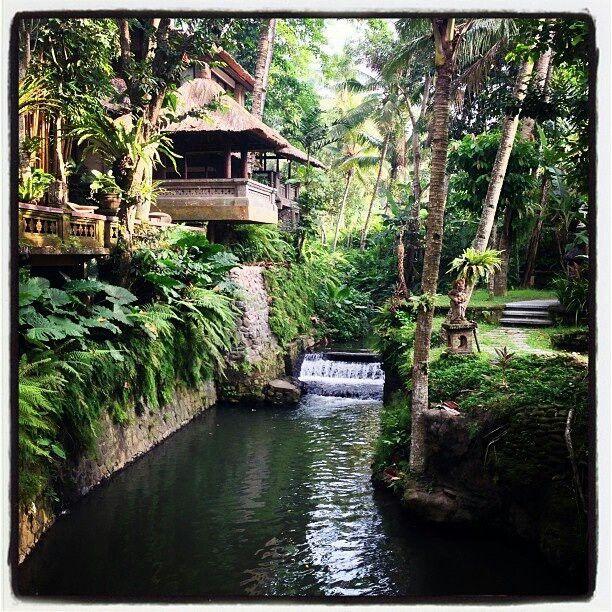 Beautiful Ubud, Bali, Indonesia