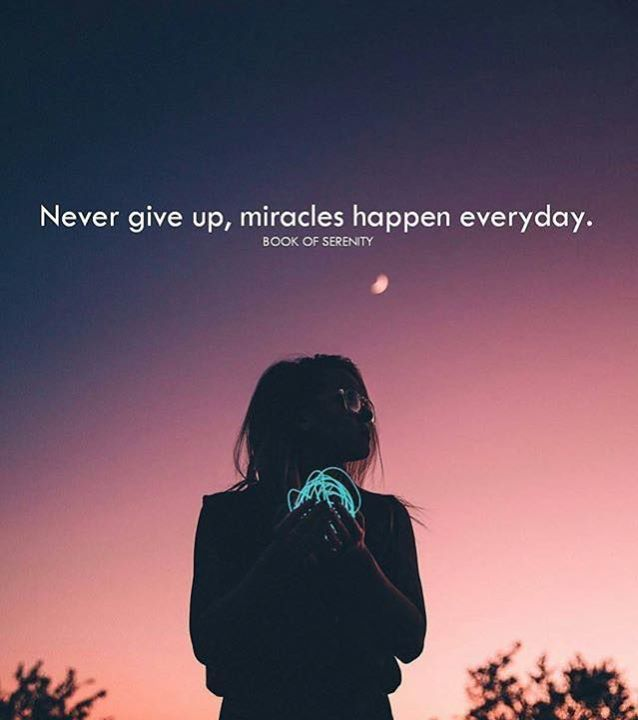 Inspirational Positive Quotes Never Give Up Miracles Happen Everyday Positive Quotes Miracles Happen Everyday Best Positive Quotes
