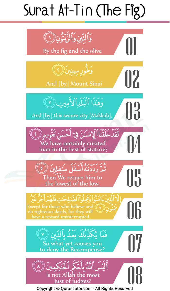 Surat At Tin Ayat 4 : surat, Great, Importance, Surah, At-Tin, Learn, Quran,, Islam, Facts,