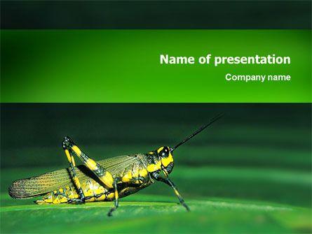 http\/\/wwwpptstar\/powerpoint\/template\/grasshopper - it powerpoint template