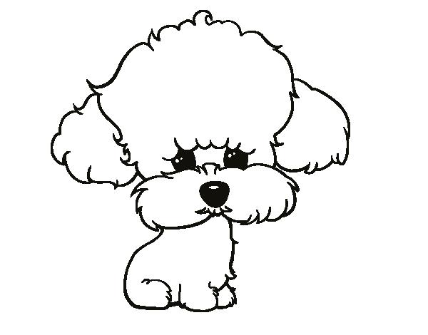 Resultado de imagen para dibujos de perritas poodle | Dibujos ...