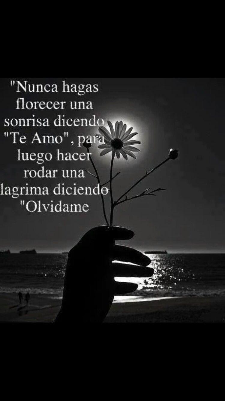 Pin de Soraya K Prince en Tristeza | Love Quotes, Feeling ...