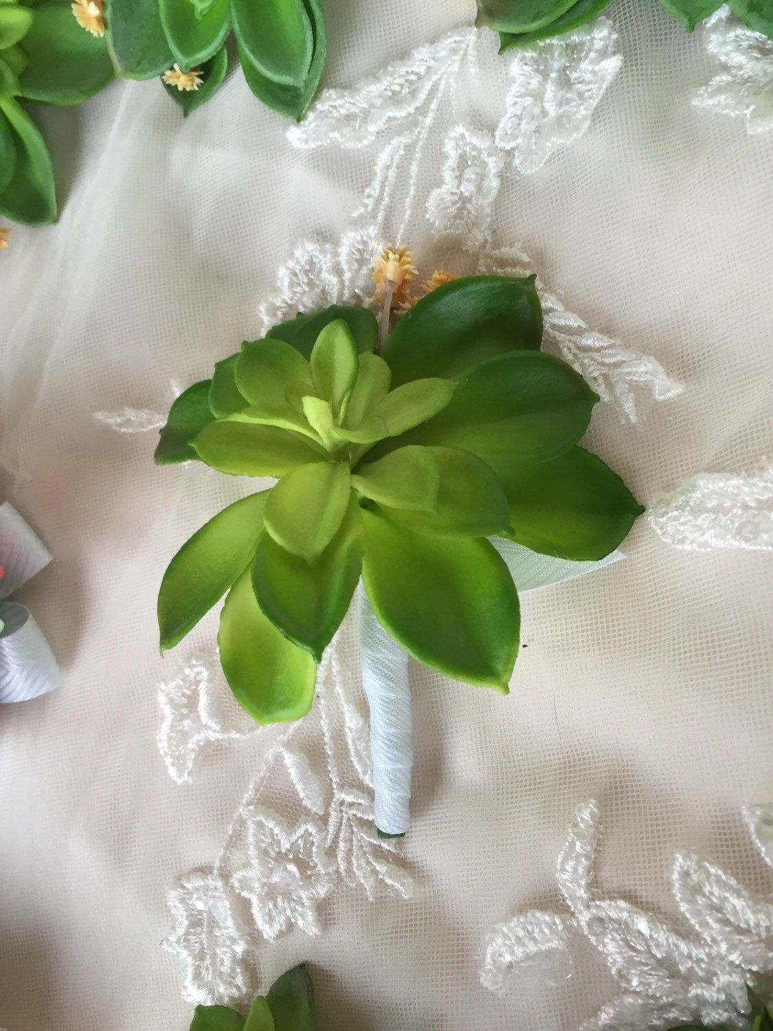 A #succulent #boutonniere from my Etsy shop https://www.etsy.com/listing/254535825/succulent-boutonniere-succulent #succulents #boutonniere #succulentboutonniere #green #greenboutonniere