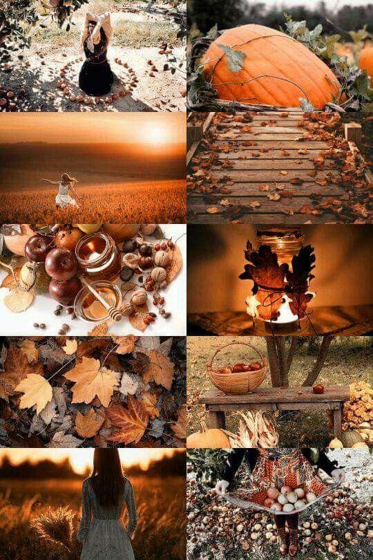 Pinterest: lifeingray | Autumn in 2019 | Autumn cozy ...