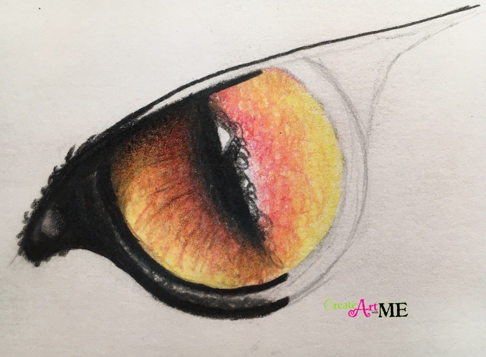Emphasis Animal Eyes Spot Color Drawing Graphite And Colored Pencil Drawing Project My 7th Grade Art Class Just Eye Drawing Colorful Drawings Pencil Drawings