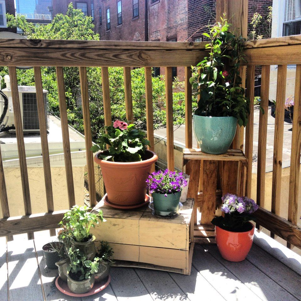 My city porch garden! Decorative crates found behind a coffee shop ...