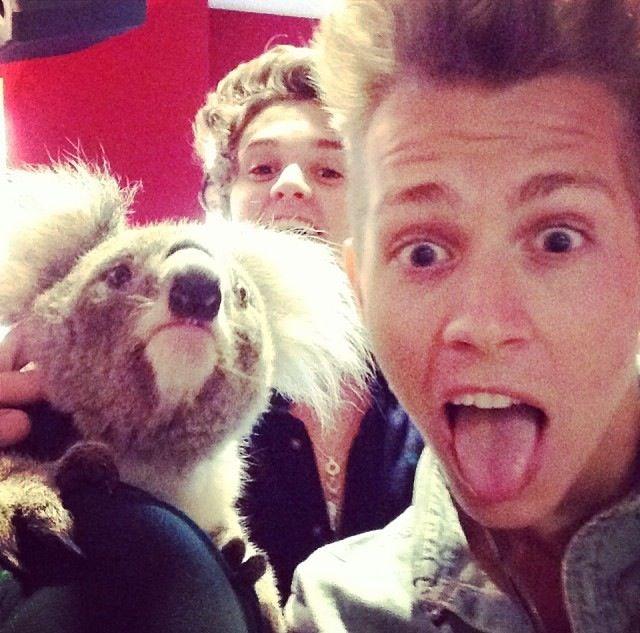 James and Bradley with a Koala in Australia Xx ❤