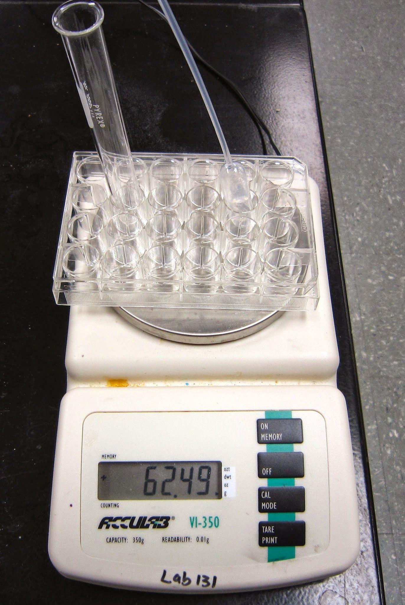 Chemistry Lab Percent Composition