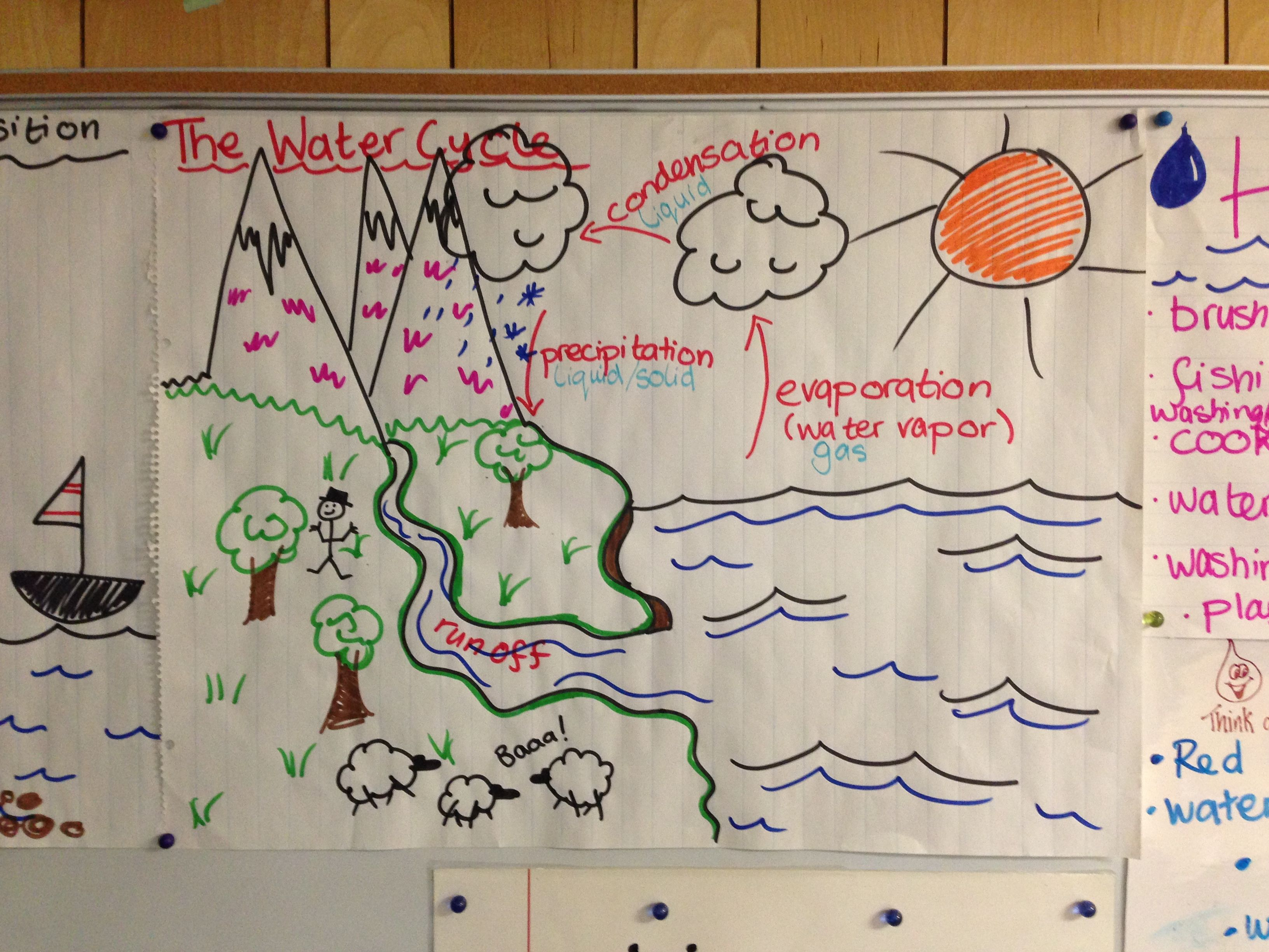 The water cycle poster 4th grade science pinterest preschool the water cycle poster 4th grade ccuart Choice Image