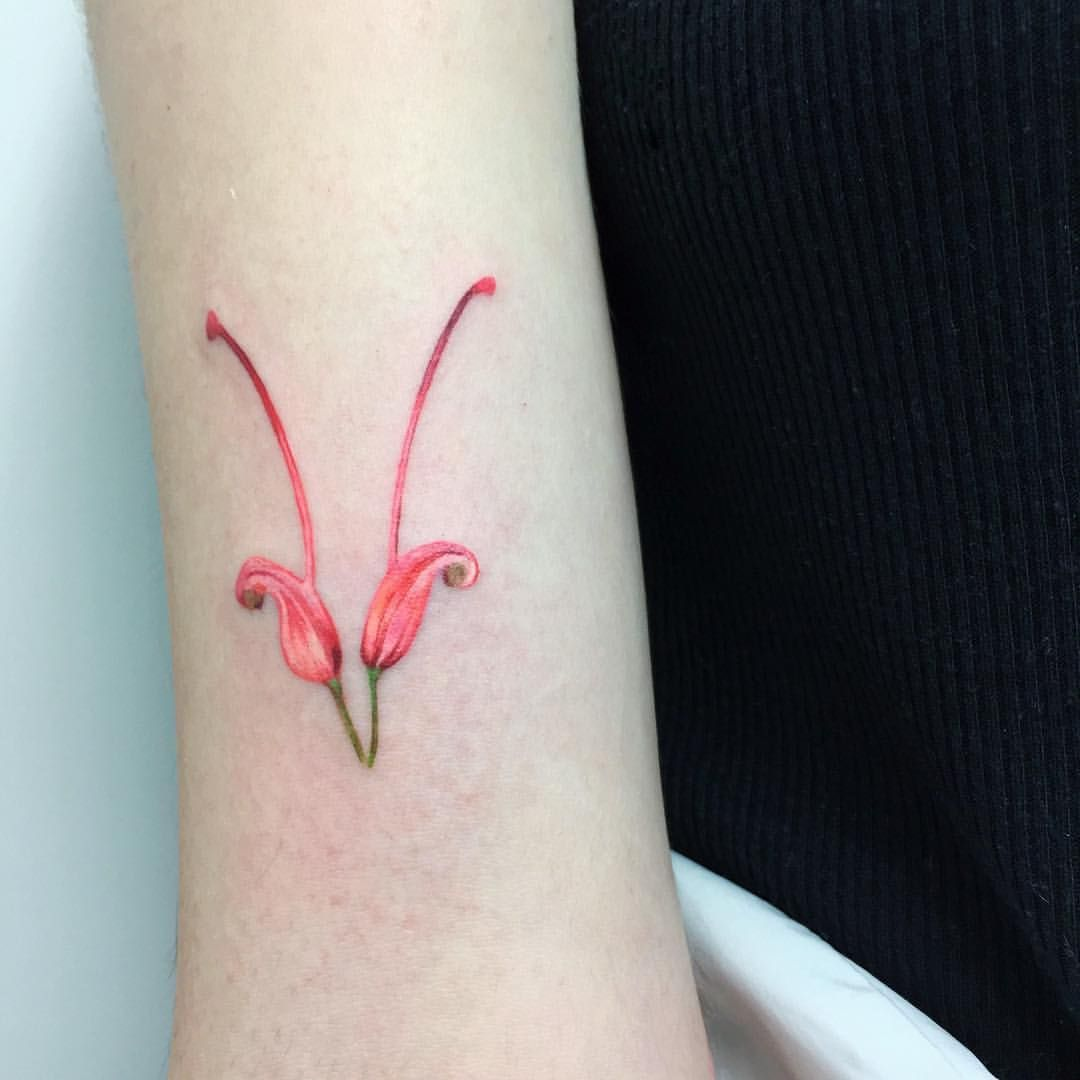 "22k Likes, 36 Comments - 🌿tattoo and Illustration🌿 (@rit.kit.tattoo) on Instagram: ""super tiny and beautiful grevillea flower, which I found at Barcelona botanical garden ( but in…"""