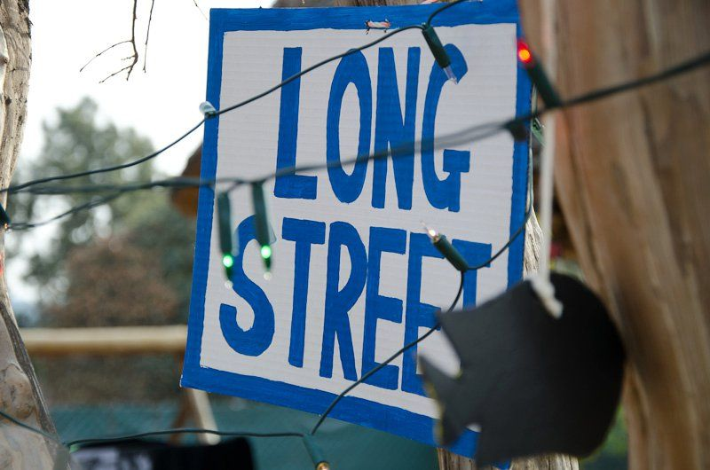 The Debauchery Farewell: Street names of Cape Town were hanging in the trees.