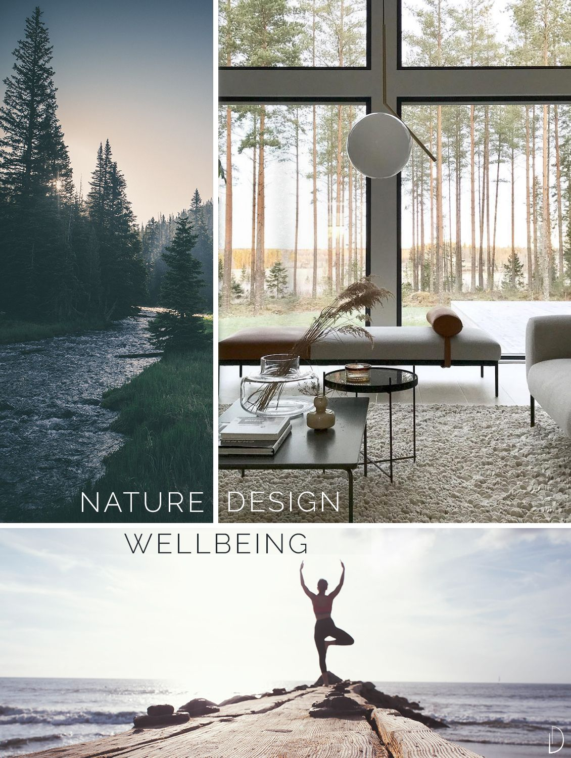 Biophilic Sustainable Interior Design How Do Interior Design
