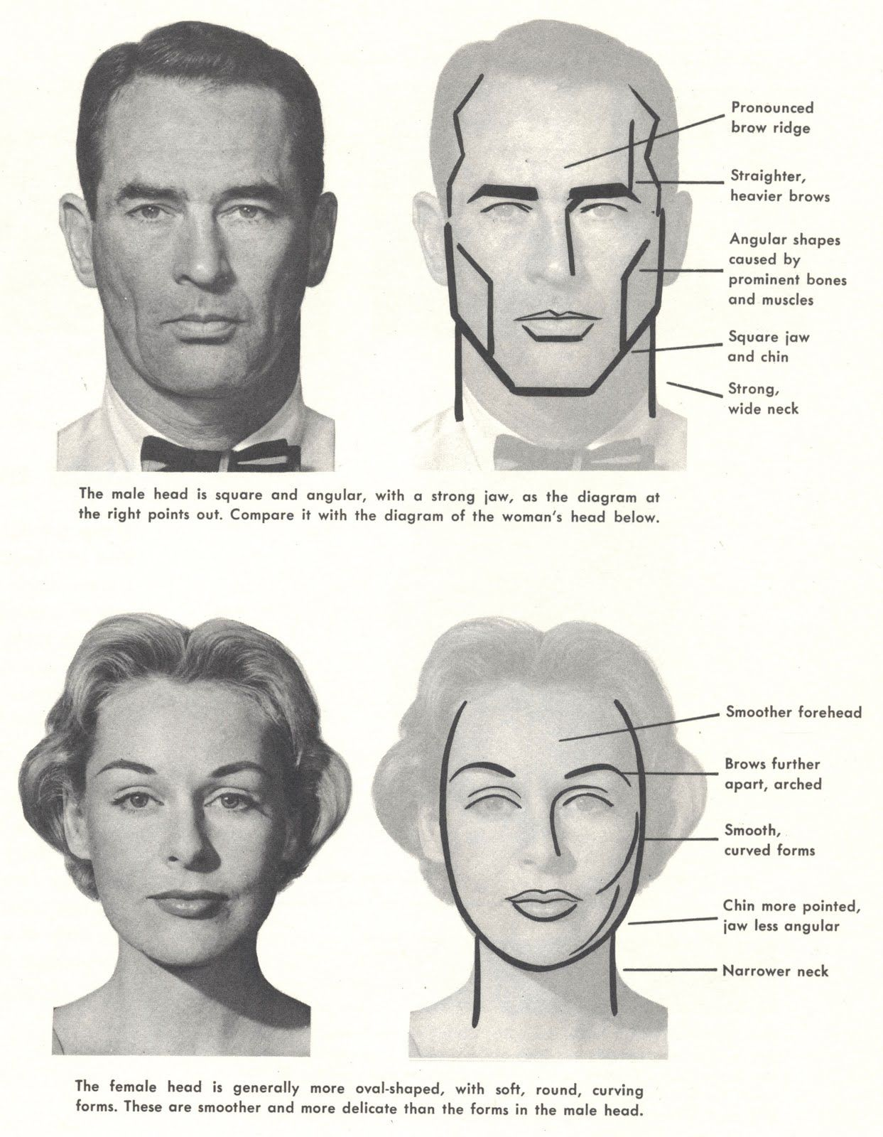 Illustration art on the difficulty of drawing womens faces