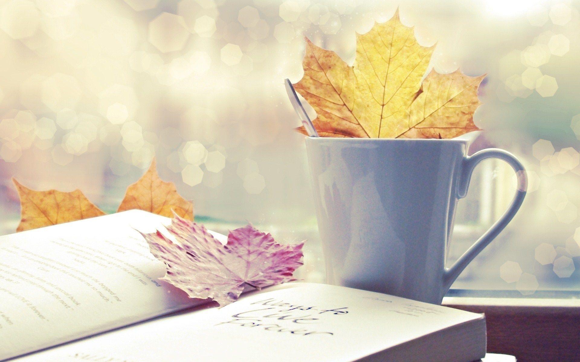 Red Fall Leaves Iphone Wallpaper Book Desktop Wallpaper Images Hd Wallpapers Ololoshenka