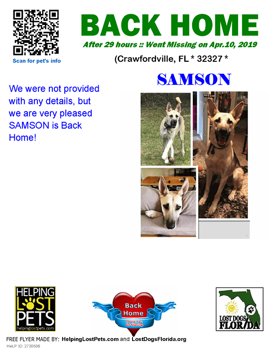 Backhome Crawfordville Length Of Time Lost 29 Hours Welcome Home Samson Lostdogsflorida Helpinglostpets Losing A Dog Losing A Pet Pet Home