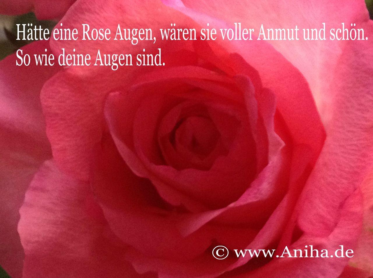 Deine Augen sind schön.    www.Aniha.de