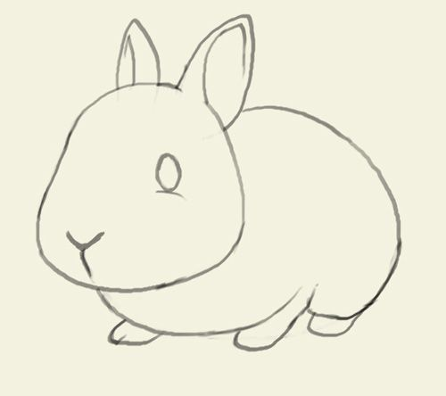 How to draw bunny. Learn to draw a cute bunny step by step images ...