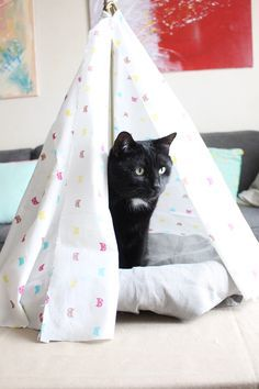 tipi pour chat cat teepee kids room diy crafts pinterest katzen. Black Bedroom Furniture Sets. Home Design Ideas