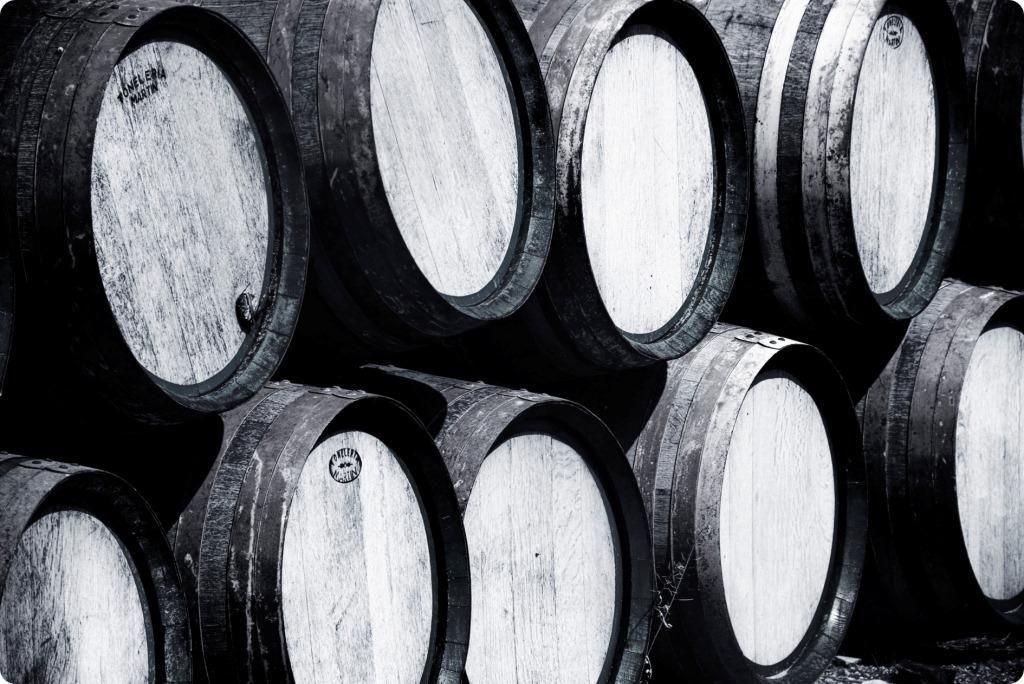 Muchos son los pasos necesarios para una buena vinificación. Y, además, cada uno de ellos cuenta. Repasemos los meses del trabajo imprescindibles en un año para que el vino pase de la viña a la bodega.