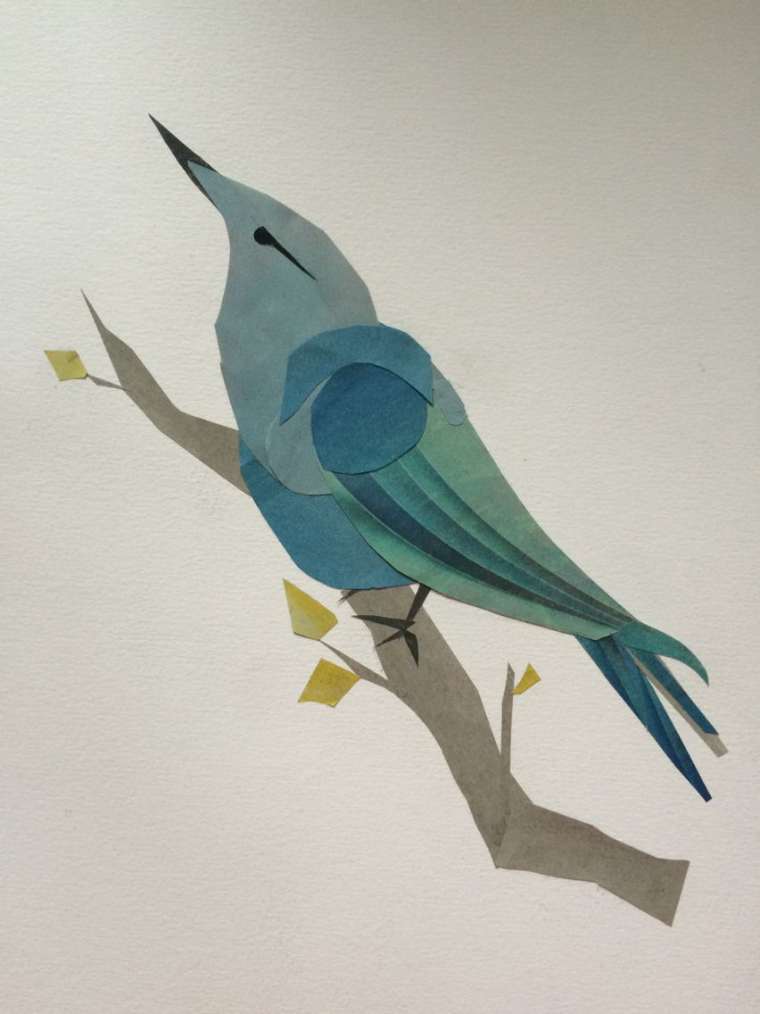 Collage-birds of paradise  M.Y illustrations 2015