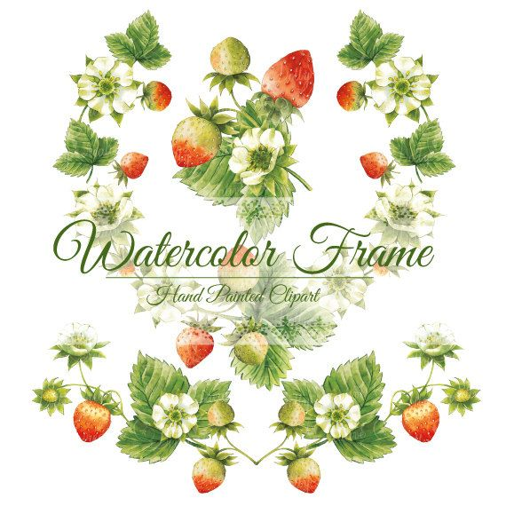 Strawberries frame, watercolor frame, watercolor clipart ...