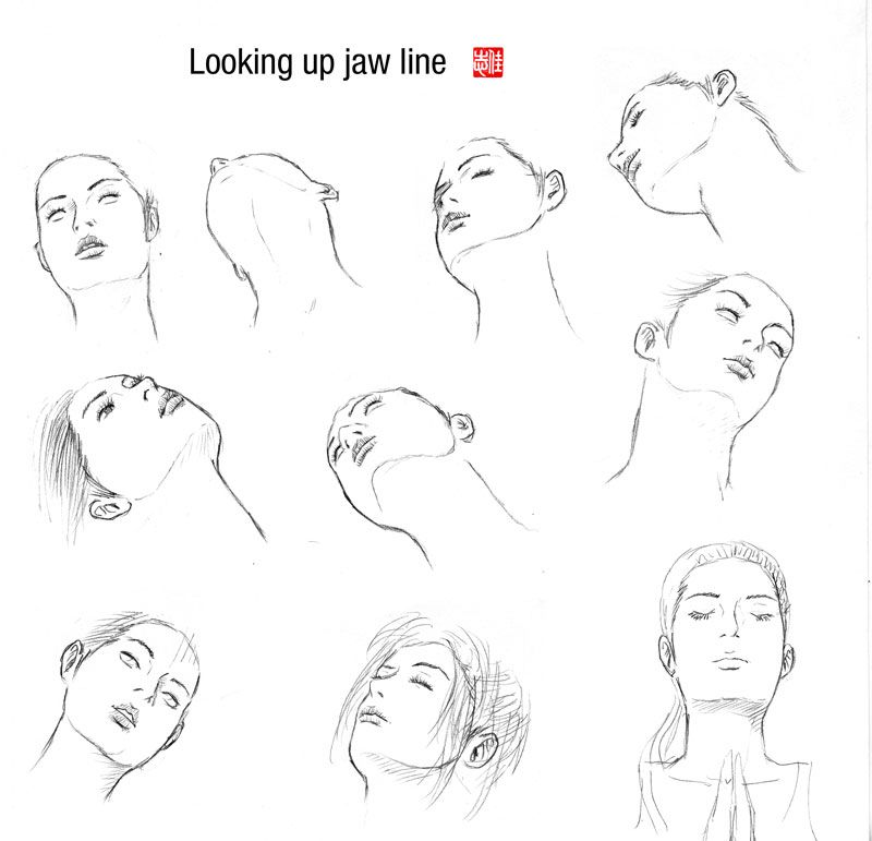 Male Manga Jaw Variations Guy Drawing Manga Drawing Anime Male Face