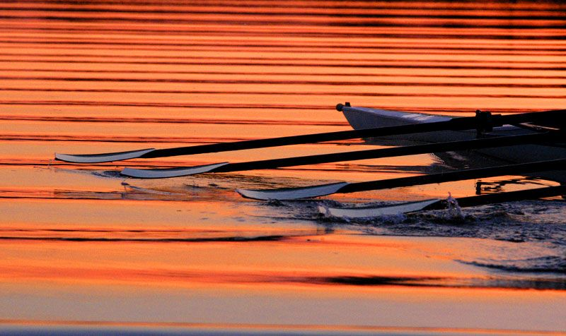Rowing sunset